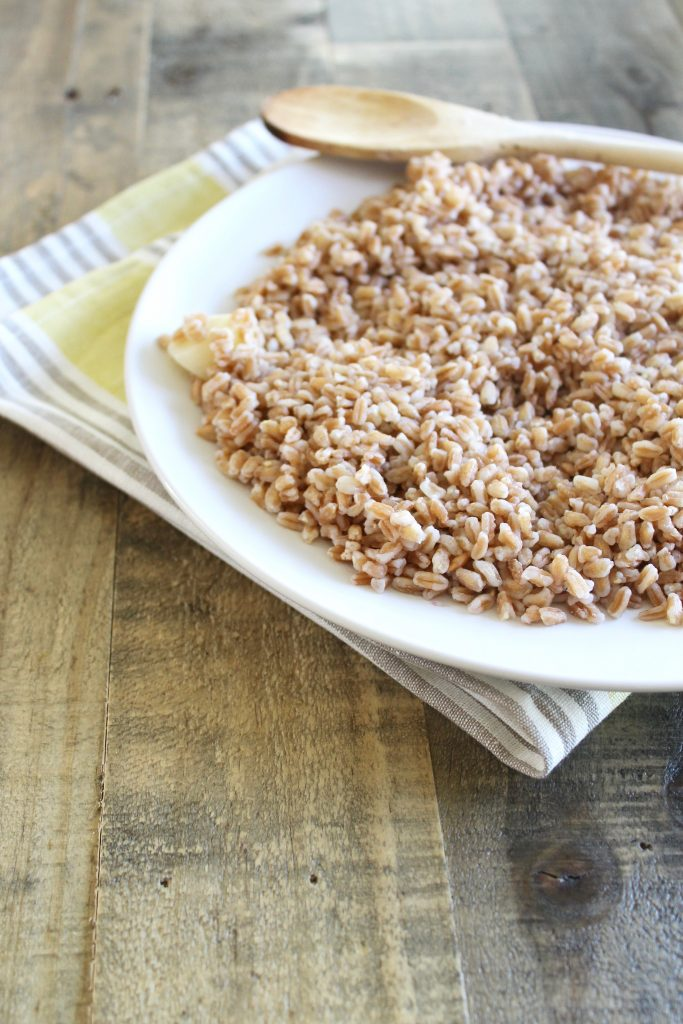 A White Plate of Cooked Farro ll www.littlechefbigappetite.com