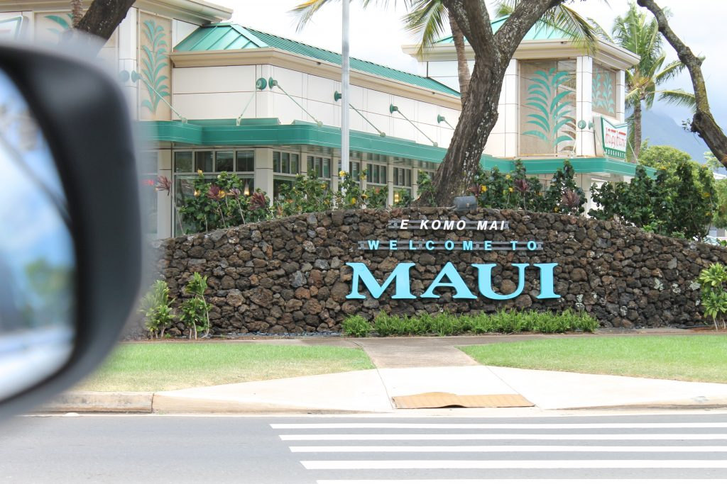 Welcome to Maui Sign   www.littlechefbigappetite.com
