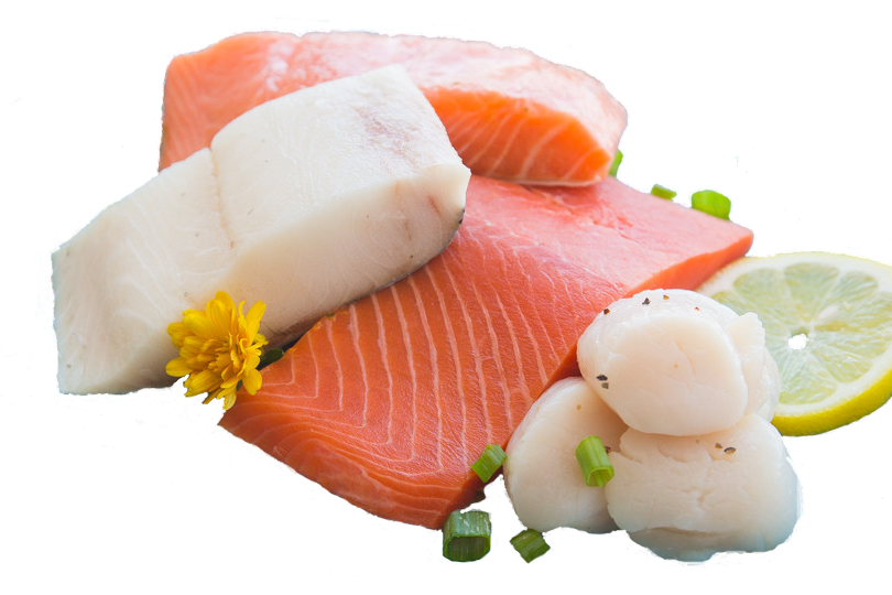 SizzleFish Prime Subscription Fish Variety